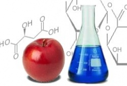 EuroFoodChem XVII conference in Istanbul, Turkey, May 7-10, 2013